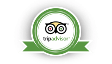 Badge Trip Advisor 1 1